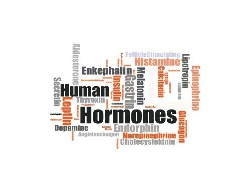 Stress Hormones and Depression